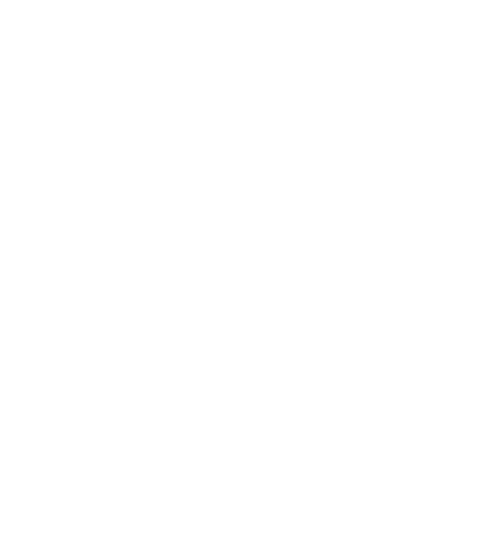 Focused - Support the prognosis and therapeutic decisions in patients diagnosed with NSCLC